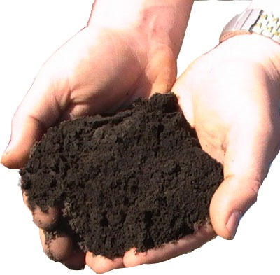 Topsoil loam worcester ma delivery perreault nursery for Topsoil delivery