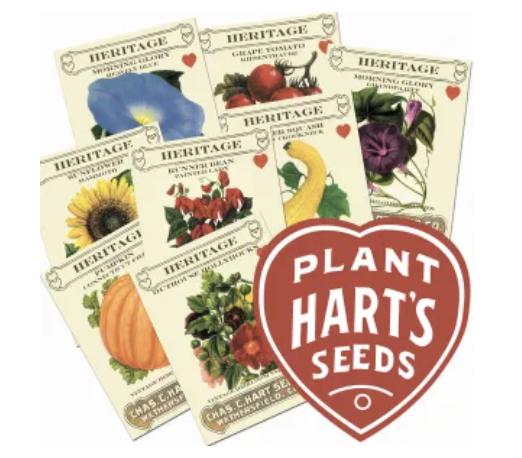 Vegetable & Flower Seeds